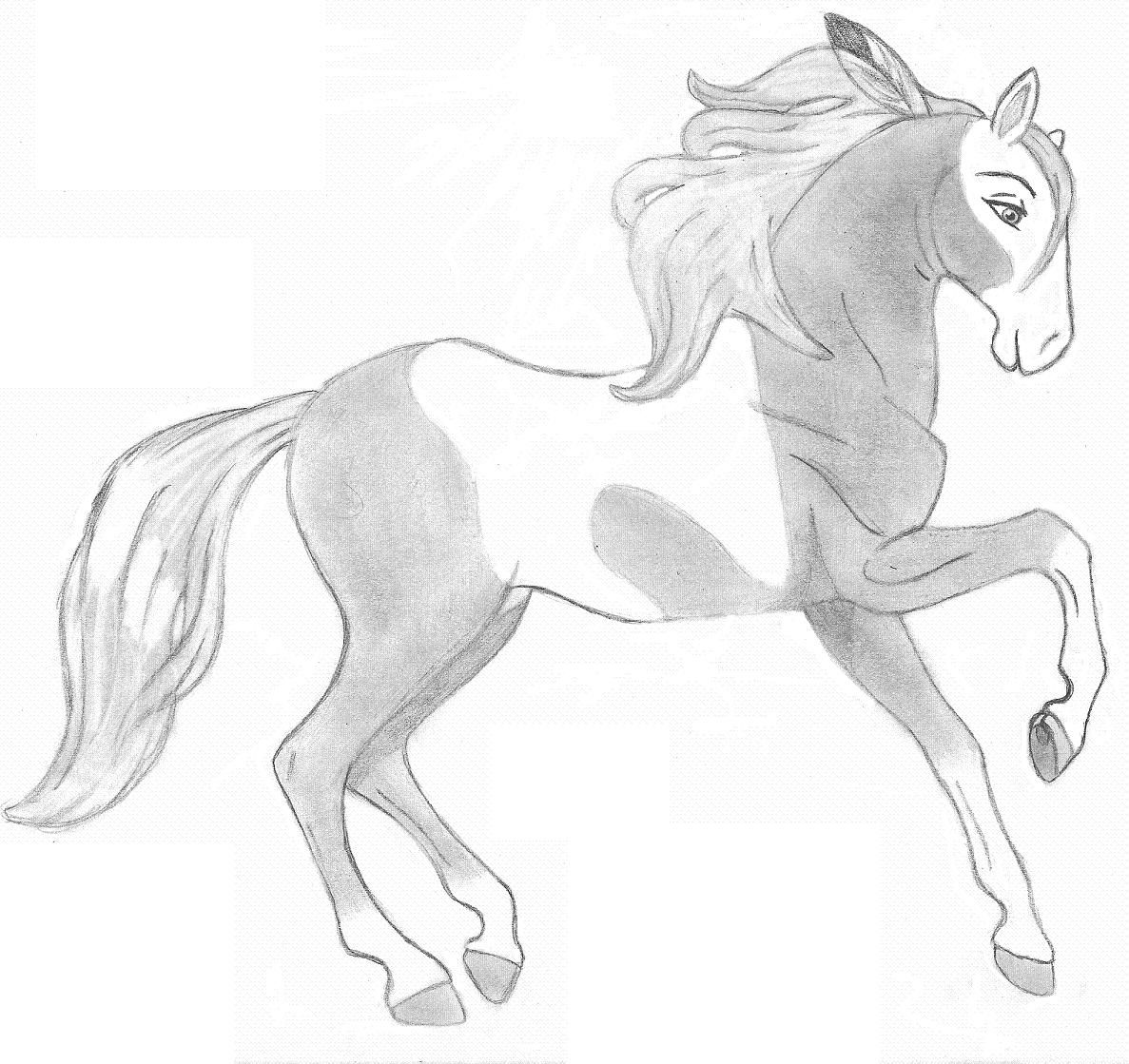 Pin by Elizabeth Peuchen Vivas on Comics | Pinterest | Easy cartoon ... for Horse Cartoon Drawing  565ane