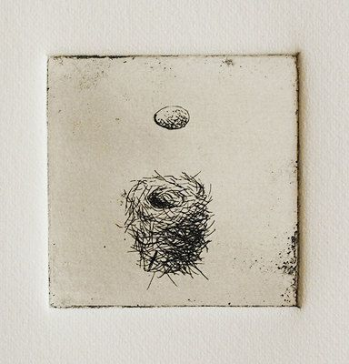 Bird Nest and Egg print-from original etching