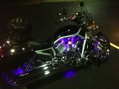 My 2003 Harley VROD with custom purple LEDs lighting the ... Harley Davidson Engine Coolant on