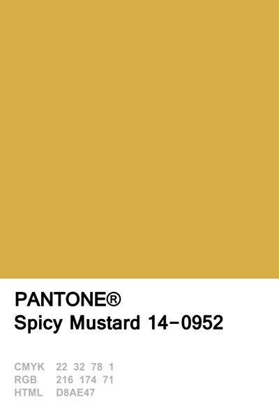 pantone 2016 spicy mustard pinteres. Black Bedroom Furniture Sets. Home Design Ideas