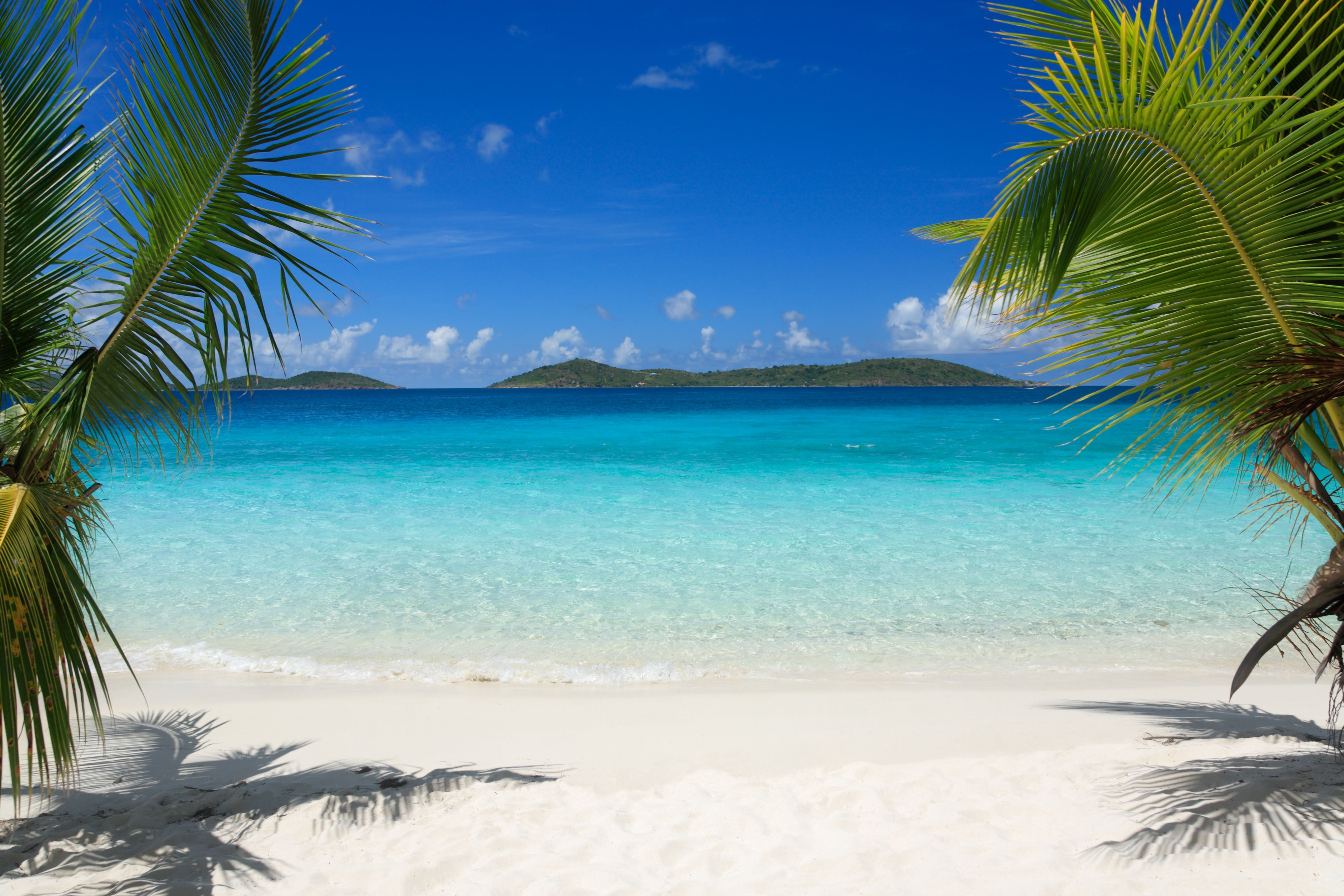 Caribbean Beach Scenes: Beach Wall Murals Window Scenes - Bing Images