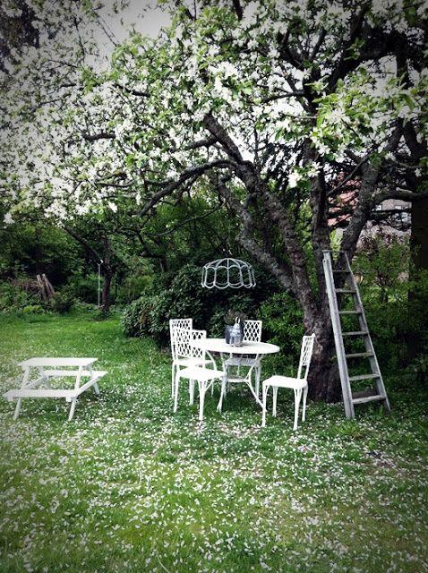Stil Inredning & Design: Vår trädgård   my garden... some day ...