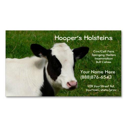 Holstein cow dairy cattle ranch business card dairy cattle holstein cow dairy cattle ranch business card colourmoves