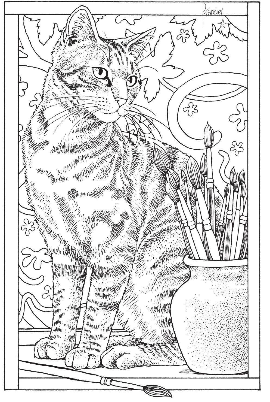 Inkijkexemplaar Franciens Kattenkleurboek Om Te Versturen
