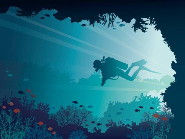 Scuba Diver Underwater Cave Corals Sea Vector Art Illustration Underwater Drawing Sea Illustration Underwater Caves