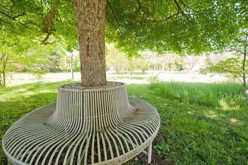bench around tree trunk at ch teau dupac vacation rental. Black Bedroom Furniture Sets. Home Design Ideas