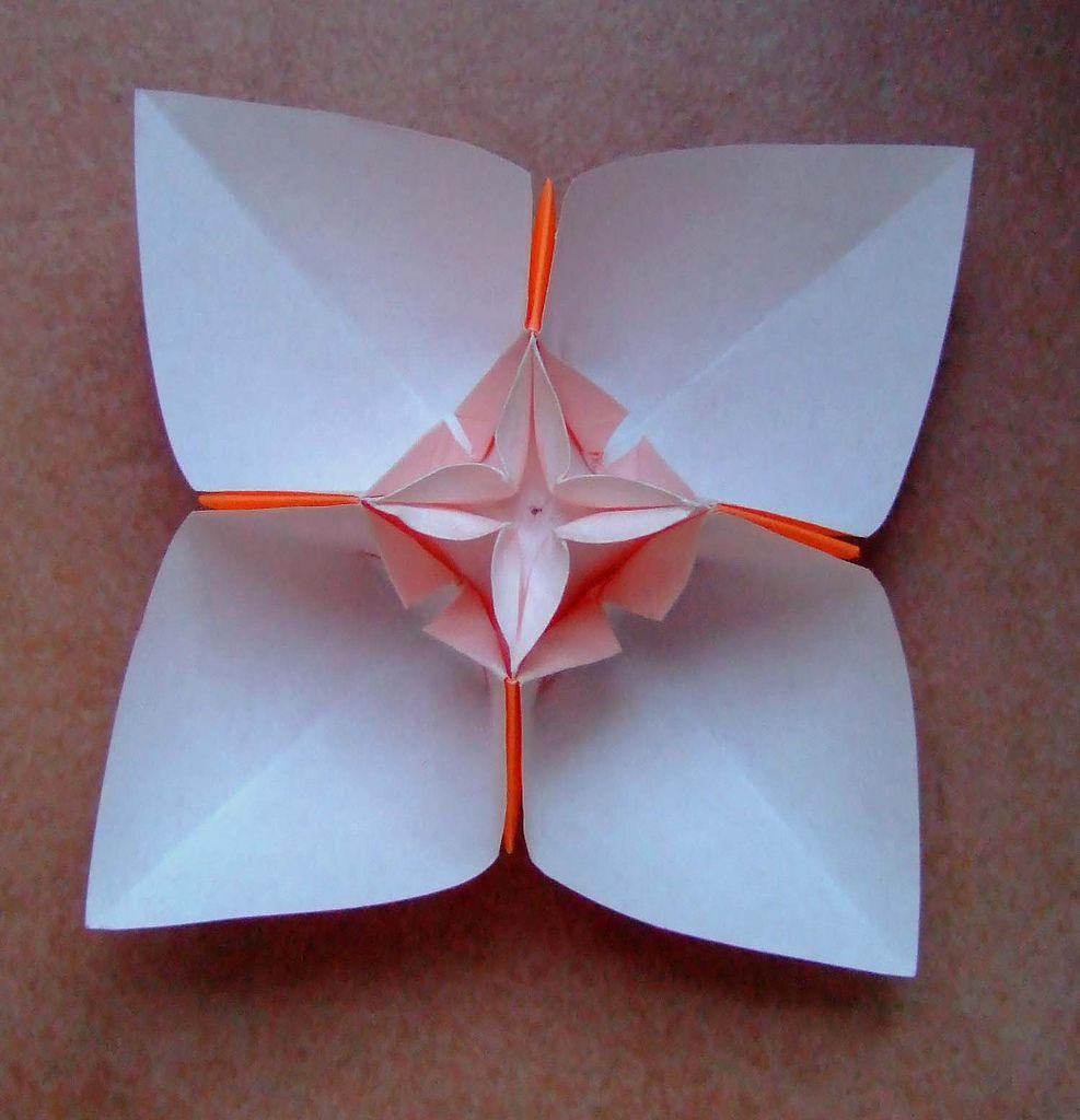 Origami Flower Origami Flowers Origami And Flower