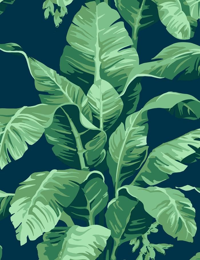 Bringing The Outside In Pacifico Palm Print Is Sure To Transform Any Room With Tropical Flair Hand Drawn By Our House Designer This Banana Leaf