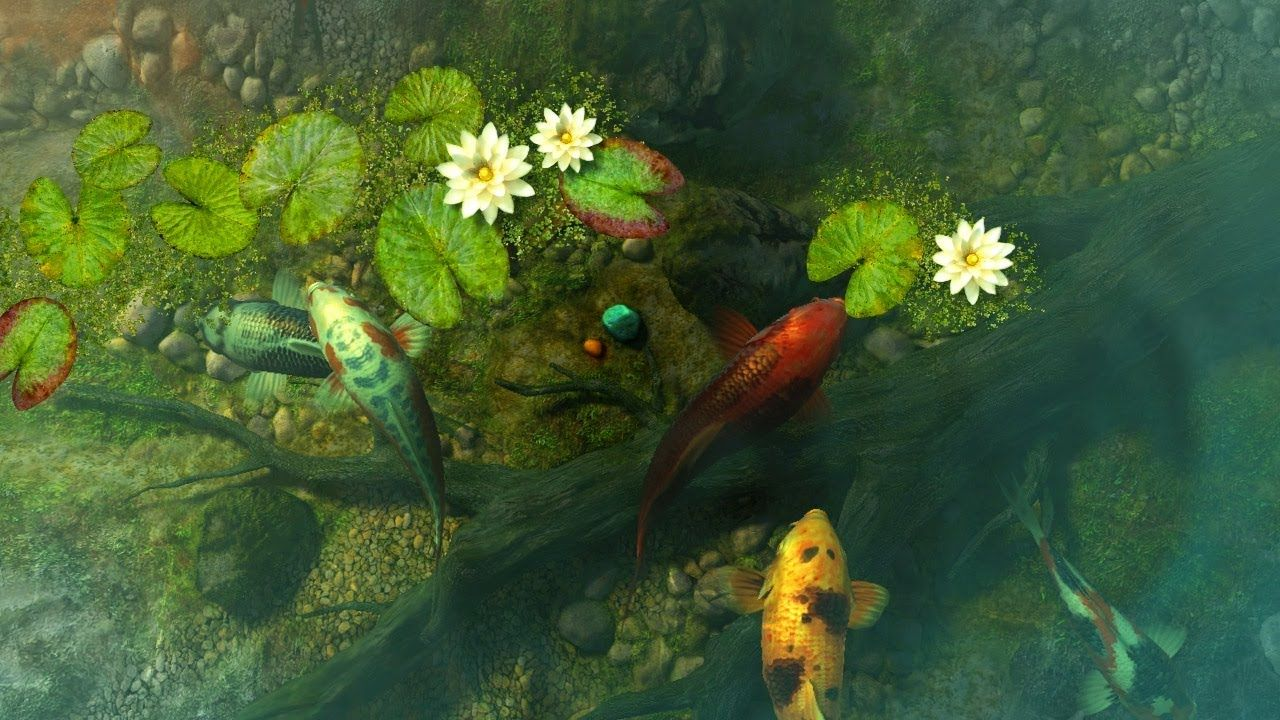 Koi Pond Garden 3d Screensaver Live Wallpaper Hd In 2020 Koi Pond Live Wallpapers Koi