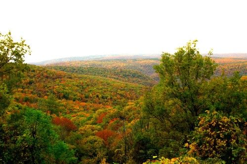 Arkansas - Leaf Peeping Across America: A Coast-to-Coast Guide Slideshow at Frommer's