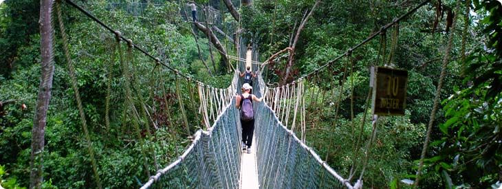 Costa Rica Vacations Vacation Packages Tours Travel
