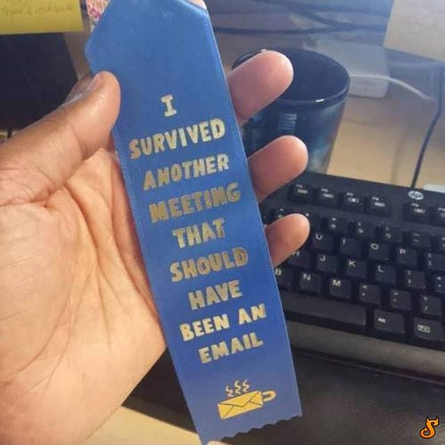 I survived another meeting that should have been an email...
