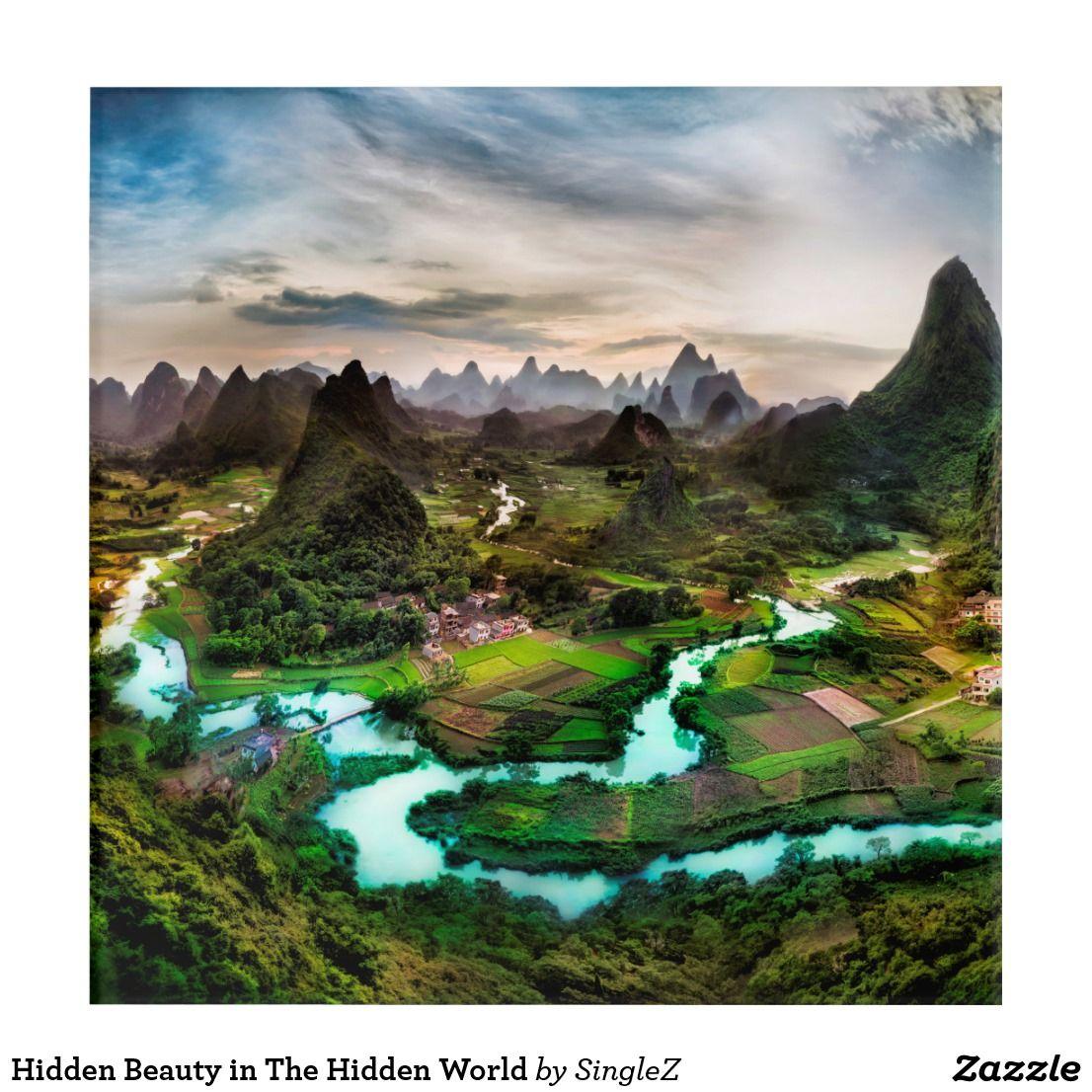 Hidden Beauty in The Hidden World Acrylic Print