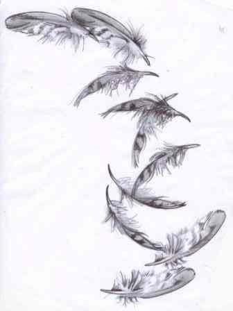falling feathers ink feather tattoos tattoos feather