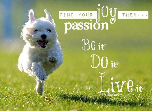 Find your Joy and Passion then .... Be it. Do it. Live it.