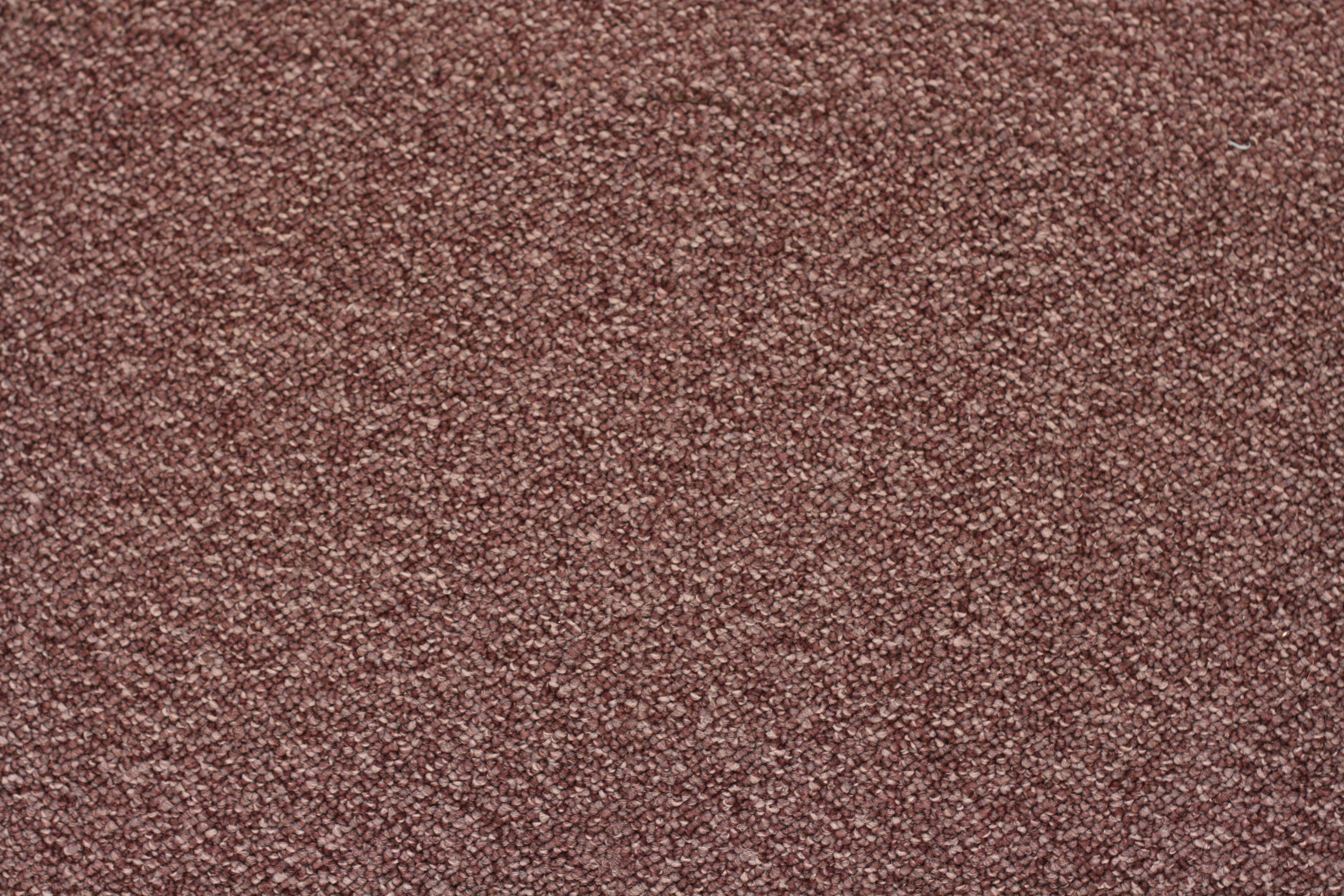 Carpet Google Search