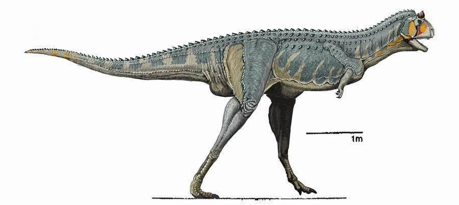 Dinosaurs Photo Carnotaurus Dinosaur Images Dinosaur Photo Dinosaur