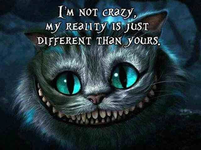 Cat print,I/'m not crazy My reality is just different than yours,character art
