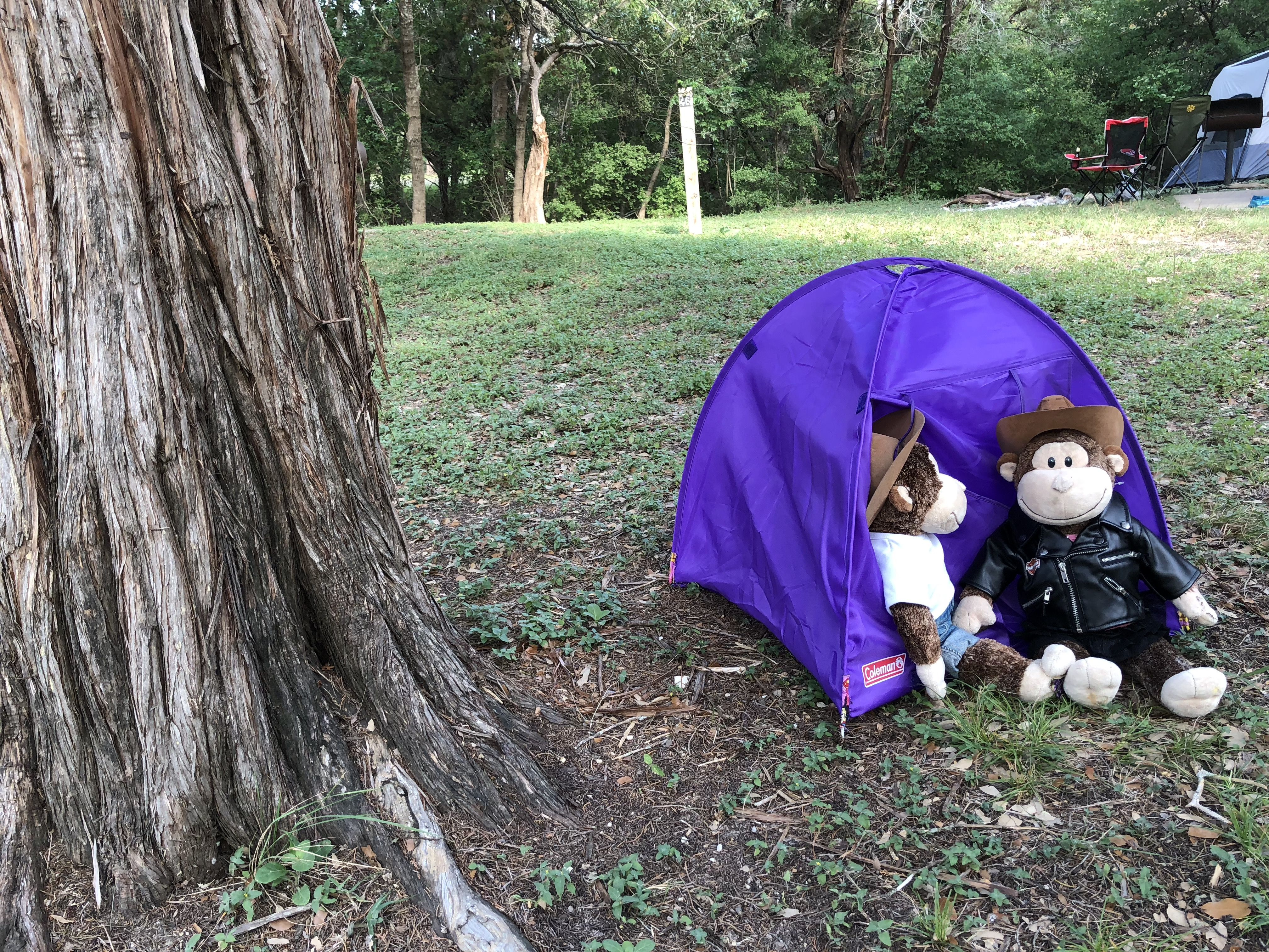 Reynolds Creek Campground Waco Tx Situated Along The Shores Of Lake Waco Nicely Shaded Baby Car Seats Outdoor Gear Lake
