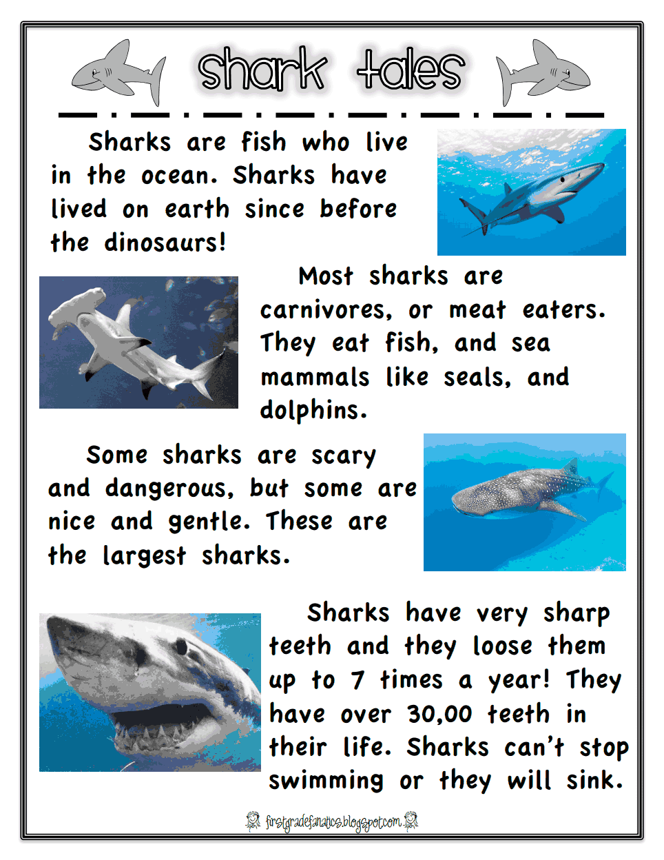 shark report.pdf - Google Drive   Shark activities [ 1248 x 964 Pixel ]