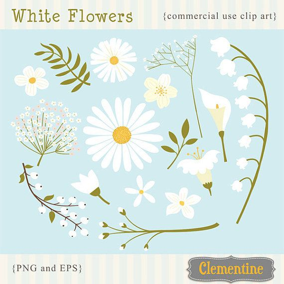 White Flowers Clip Art Images White Flowers Vector Royalty Free