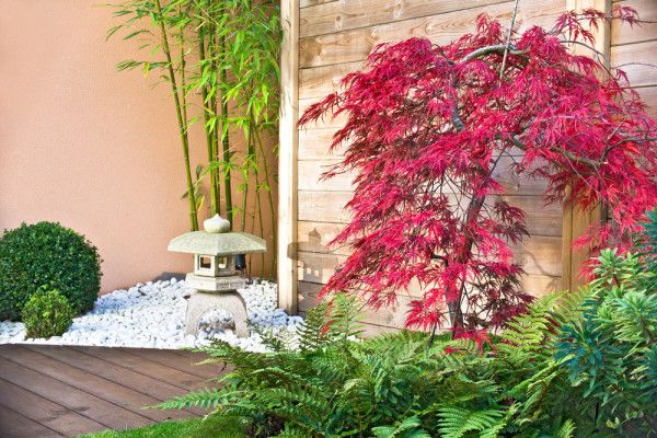 Exceptional A Zen Garden Can Provide You With A Sanctuary For Mindful Practice, Yoga  Practice Or For An Alternative To Traditional Lawn Landscaping.