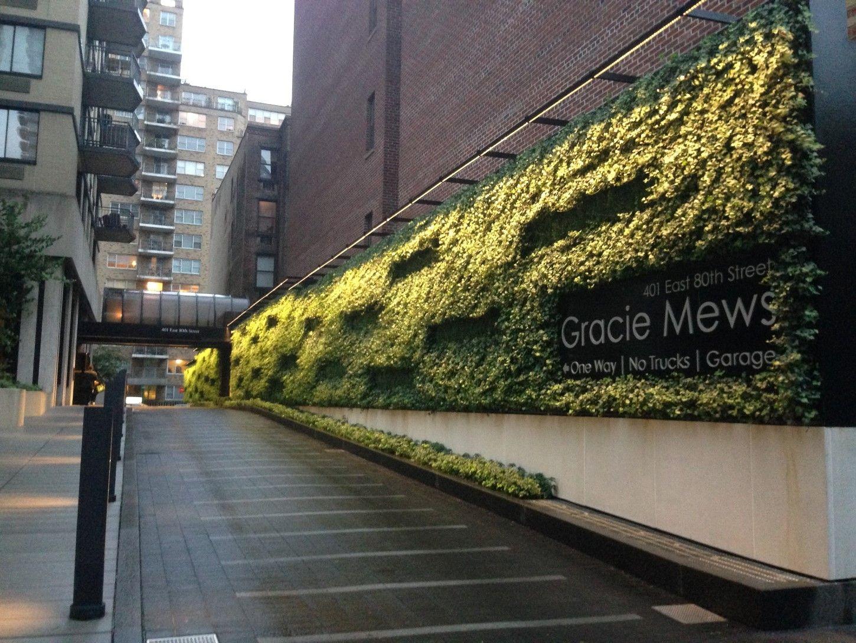 Gracie Mews Living Green Wall Sponzilli Landscape Group