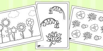 Colouring Pages Topics Primary Resources Resource Page 1 Mindfulness Colouring Mindfulness Colouring Sheets Coloring Sheets