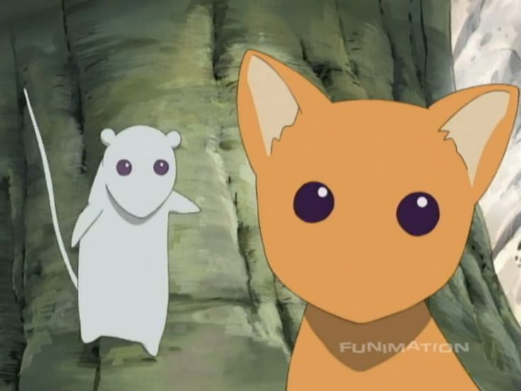 AAAAAAA LOOK AT YUKI AND KYO'S EYES (they're the same