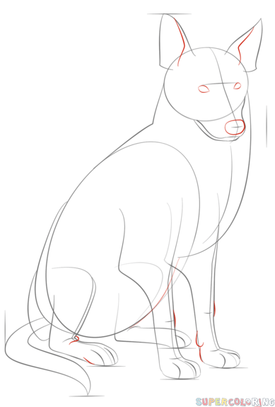 how to draw a border collie step by step drawing tutorials