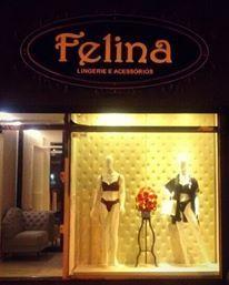 0ccda23ea36d2 Fachada da loja Felina Lingerie em Carmópolis de Minas