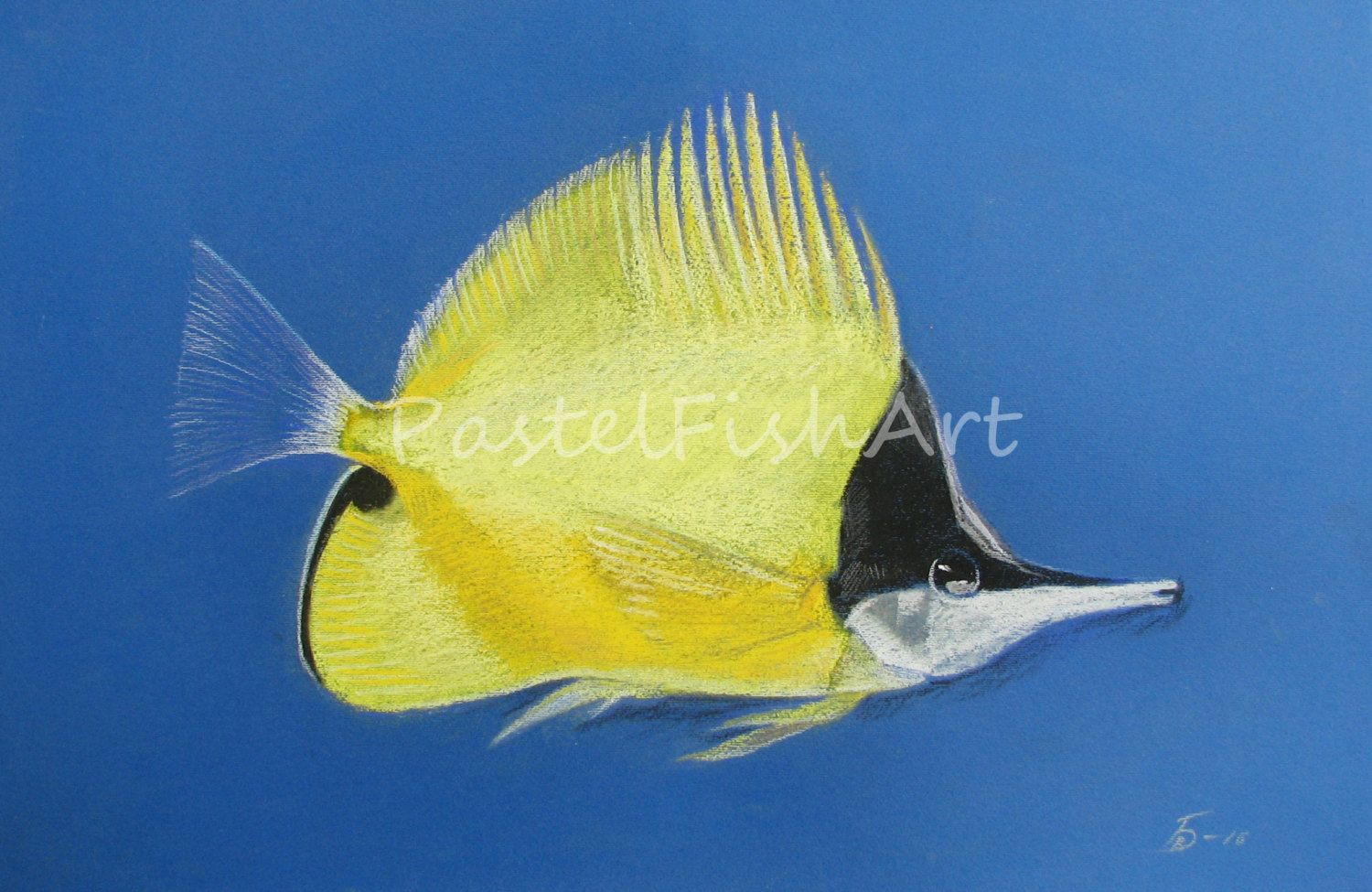 Оriginal Pastel Fish PictureYellow Longnose Butterflyfish Coral Fish ...