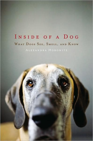 """Horowitz begins by inviting readers into a dog's umwelt-his worldview-by imagining themselves living 18 inches or so above the ground, with incredible olfactory senses comparable to the human capacity for detailed sight in three dimensions (though dogs' sight, in combination with their sense of smell, may result in a more complex perception of """"color"""" than humans can imagine). Social and communications skills are also explored, as well as the practicalities of dog owning (Horowitz disagrees…"""