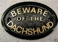 Beware of the Dachshund