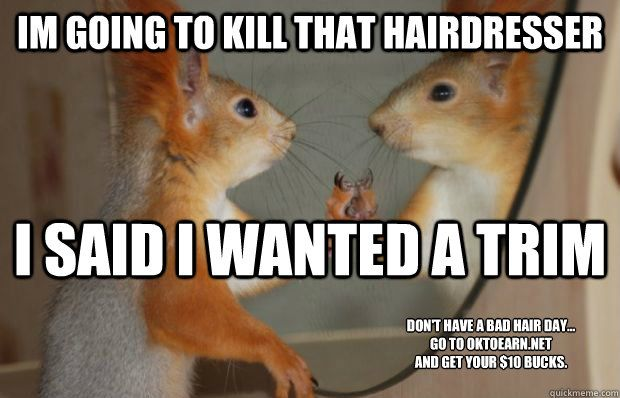 Bad Hair Day Memes Quickmeme Humor Bad Hair Day Bad Hair