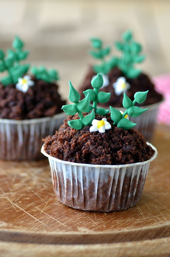 Nina's little food blog: Sweet Potato Chocolate cupcakes with chocolate cream cheese frosting