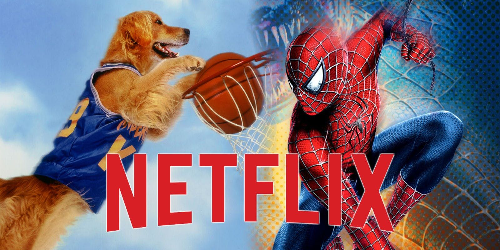 Netflix 15 Best Movies And TV Shows Leaving In December