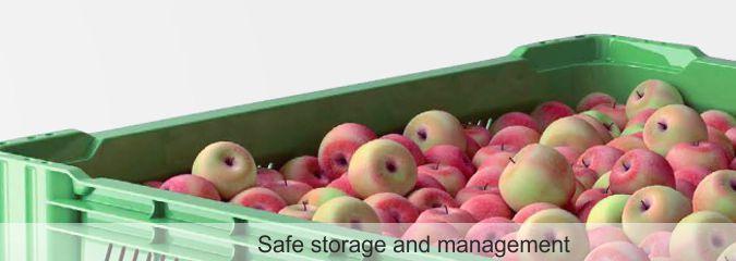 Тара для овощей и фруктов продажа тары для овощей и фруктов деревяные контеинеры для яблок продажа контеинеров для яблок