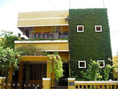 Casa con muro verde de plantas enredaderas jardineria for Muros y fachadas verdes jardines verticales