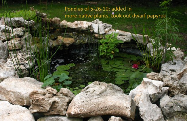 how to make a natural pond
