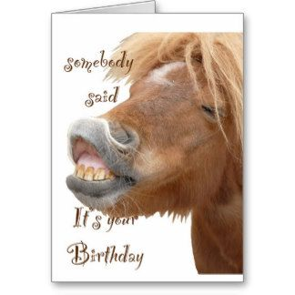 Horse Birthday Greetings