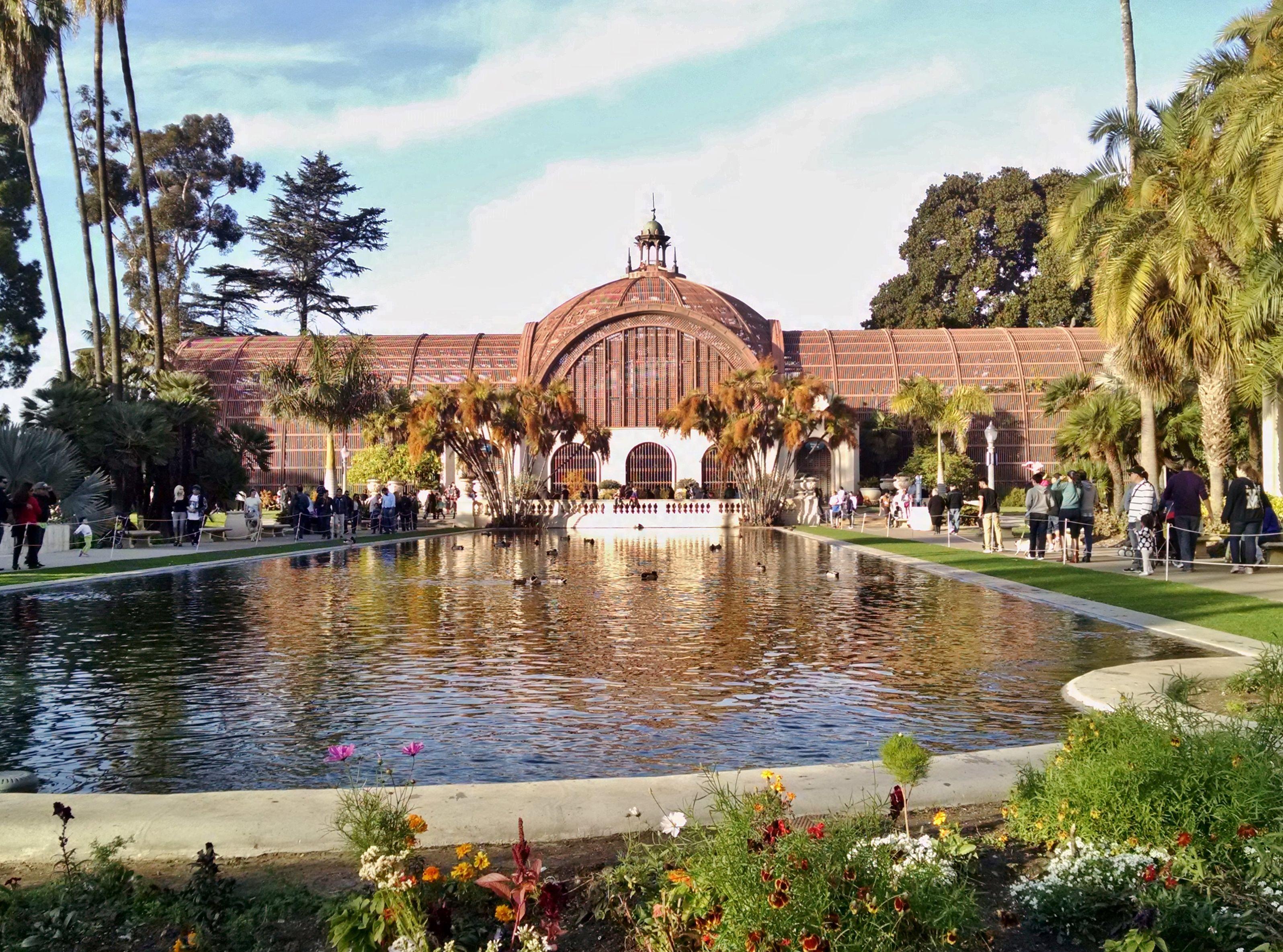 San Diego Botanical Garden, Balboa Park, Duck And Koi Pond
