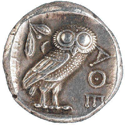 Athena S Owl In Greek Mythology A Little Owl Athene