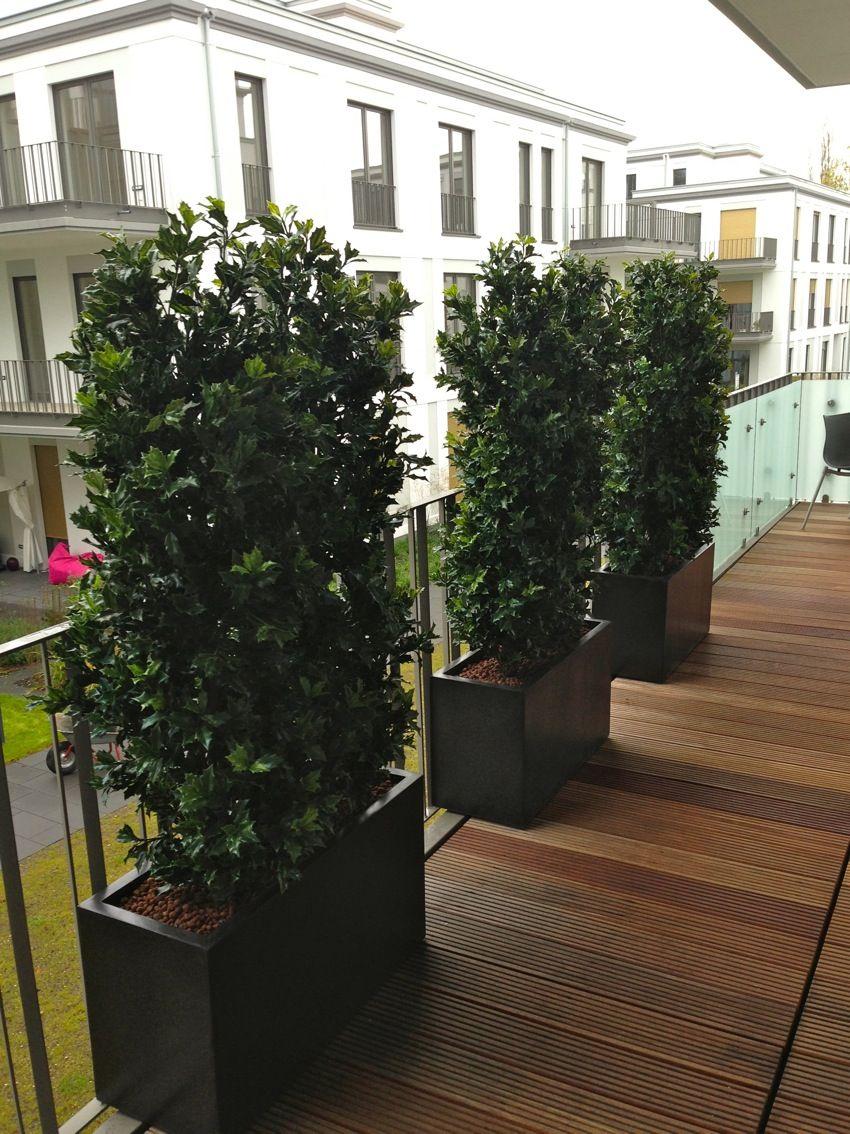 Kunstliche Ilexpflanzen Von Bella Planta Kreative Gestaltungsmoglichkeiten Terrasse Wetterfest Individuell Beratu Kunstpflanzen Pflanzen Baum Vorgarten
