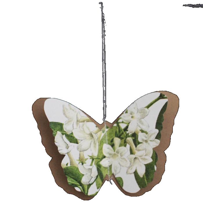 Decorazioni d'epoca - farfalle botaniche
