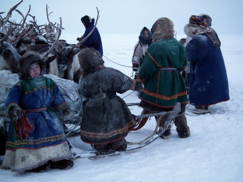 nenets children yamal peninsula - photo #9