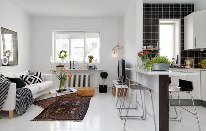Wohnzimmer Auf Der Einen Seite Und Kleine Einbaukuche Auf Der Anderen Seite Persische Teppiche Kuche Und Wohnzimmer Wohnungseinrichtung Kleine Einbaukuche