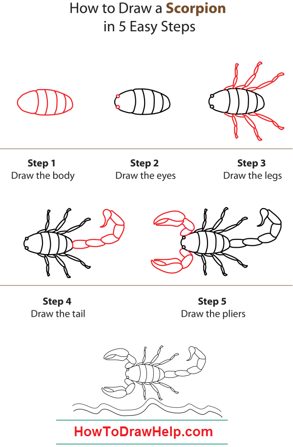 how to draw scorpions face