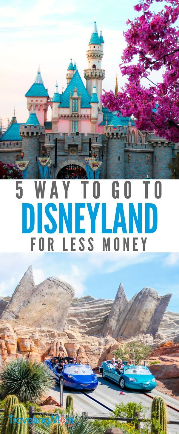 How Can I Save Money At Disneyland?