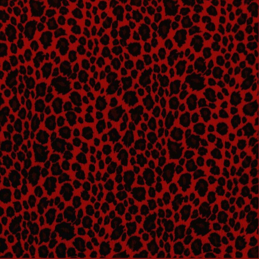pin by ashley cecil on cheetah pinterest wallpaper